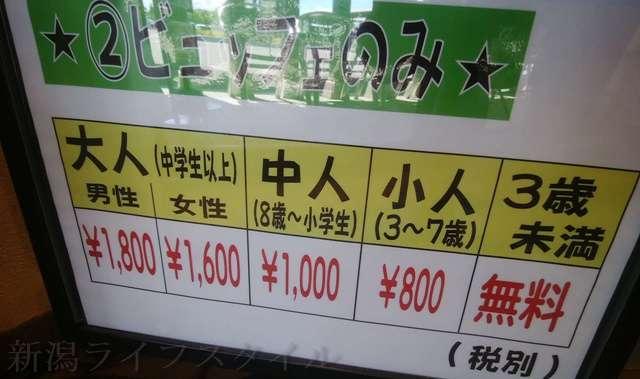 キラキラレストランのビュッフェのみの価格表