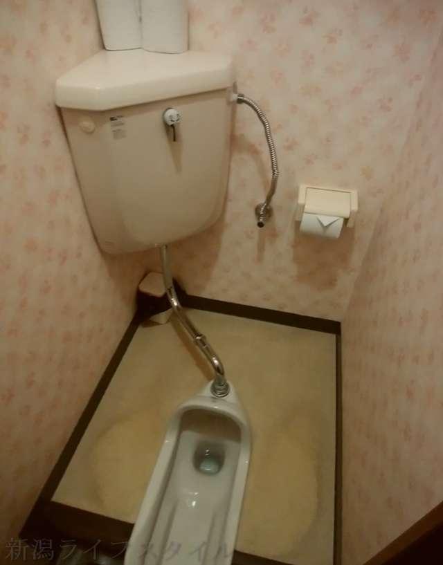 西のあんまるの和式トイレ