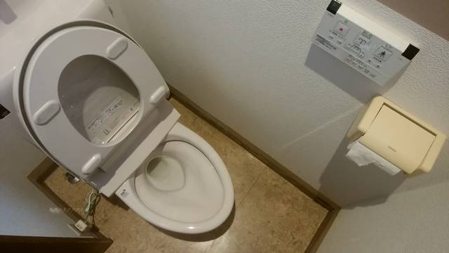 どれ味のトイレ。洋式便器とトイレットペーパーホルダーと流すスイッチパネル