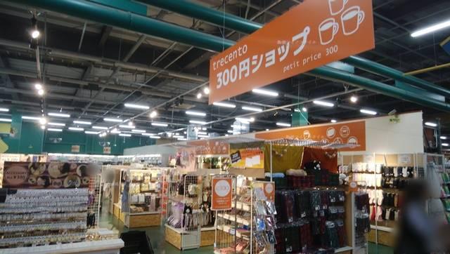 プラント横越の300円ショップ