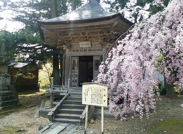 国上山の六角堂と桜