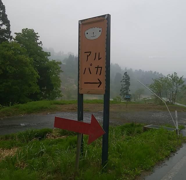 山古志油夫アルパカ牧場の近くのアルパカと書かれた大きな看板