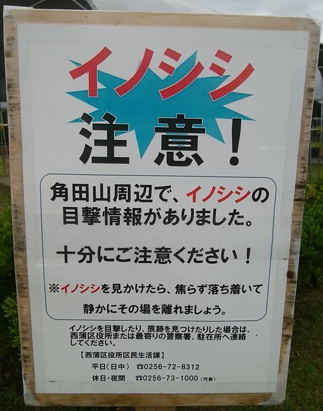 上堰潟公園にあった「イノシシに注意」の立て看板