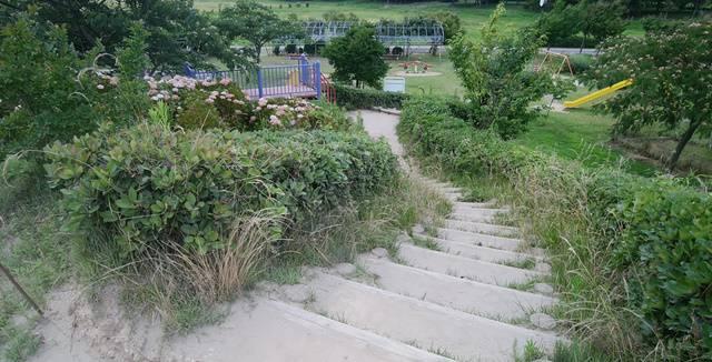 上堰潟公園の丘にある階段
