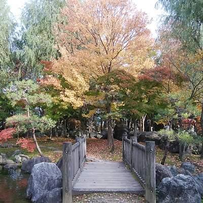 濁川公園の橋と紅葉
