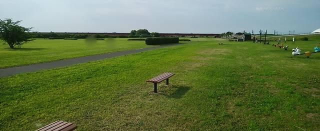 阿賀野川ふれあい公園の芝生広場の全体像