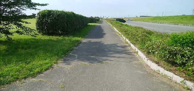 阿賀野川ふれあい公園の駐車場そばの遊歩道